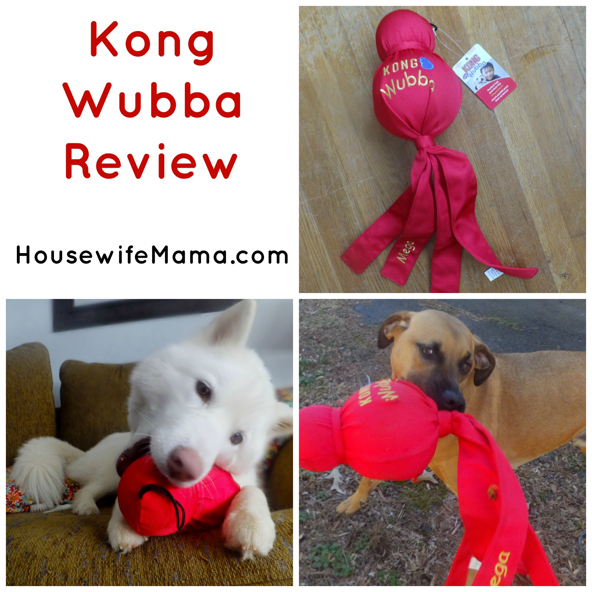 Kong Toy giveaway via EntirelyPets.com now through 3/04/14